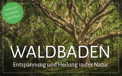 Waldbaden inkl. Kursleiter-Zertifikat: Die Heilwirkungen des Waldes